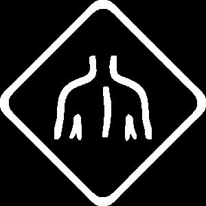 Spate - logo Novoengrama